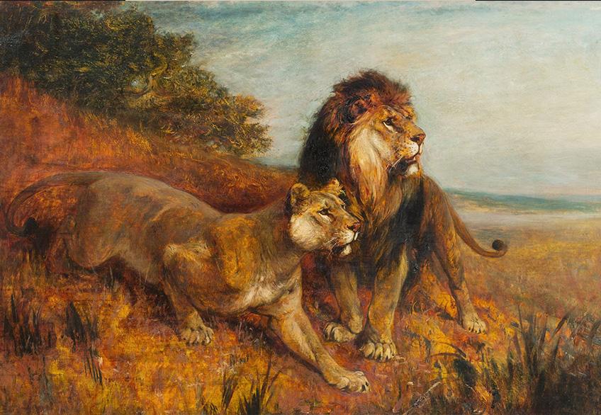 Der König der Löwen - Paul Meyerhem PRESSE