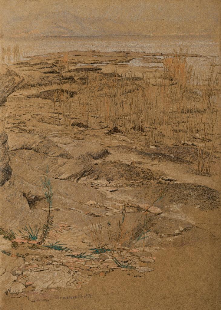 Ufer bei Sirmione am Gardasee